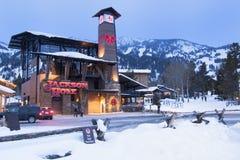 Рождество катания на лыжах Стоковые Изображения