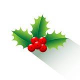 Рождество падуба и длинная тень Стоковая Фотография RF