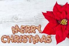 рождество предпосылки веселое Стоковые Фотографии RF