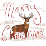Рождество самца оленя Whitetail Стоковое Изображение RF