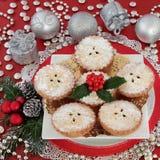 рождество семенит расстегаи традиционные Стоковые Фотографии RF