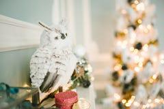 Рождество украсило комнату с сычом на камине Стоковые Фотографии RF