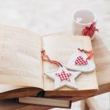 рождество украшает идеи деталей свежие домашние к Стоковые Фото