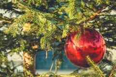 рождество шарика вися красный вал Стоковое Фото