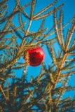 рождество шарика вися красный вал Стоковые Фото