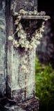 Розарий кладбища Нового Орлеана Лафайета Стоковое Изображение RF