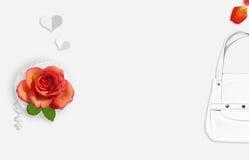 Роза апельсина, лепестки и белая женщина кладут в мешки на белой предпосылке minimalism Плоское положение Взгляд сверху Стоковое фото RF