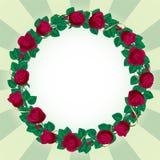 роза граници круглая Стоковая Фотография