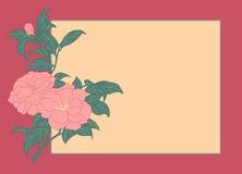роза карточки одичалая Стоковое Изображение
