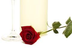 роза красного цвета prosecco c бутылки передняя влажная Стоковая Фотография RF