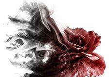 Роза от дыма стоковое фото rf