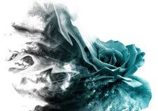 Роза от дыма стоковая фотография rf