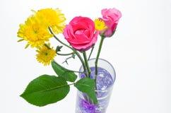 Роза пинка и желтый цветок хризантемы Стоковые Изображения RF