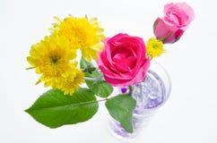Роза пинка и желтый цветок хризантемы Стоковое фото RF