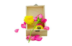 Роза пинка на меньшей деревянной коробке Стоковые Изображения RF