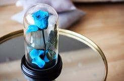 Роза сини в склянке Продолжительный поднял сохранено стоковое изображение rf