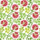 роза bush предпосылки безшовная Стоковая Фотография