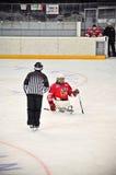 розвальни льда хоккея Стоковые Фотографии RF