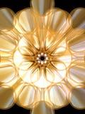розетка 3 Стоковое Изображение