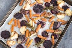 Розмари зажарило в духовке овощи корня стоковая фотография
