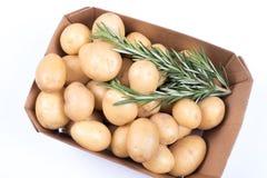 Розмари и картошки в коробке на изолированной белой предпосылке Стоковое Фото