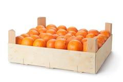 Розничная клеть зрелых tangerines Стоковые Изображения RF