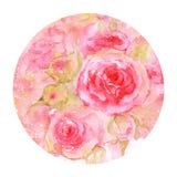 розовая акварель Стоковая Фотография RF