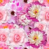 Розовая безшовная предпосылка с другими цветами стоковое изображение