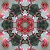 Розовая белая флористическая мандала Стоковое Изображение