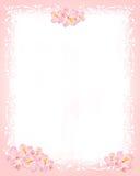 розовая белизна канцелярских принадлежностей Стоковое Фото