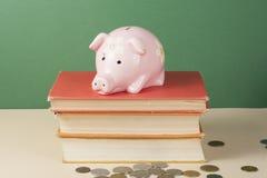 Розовая верхняя часть копилки на книгах Концепция стоимостей обучения Стоковые Фото