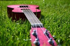 Розовая гавайская гитара на траве Стоковая Фотография RF