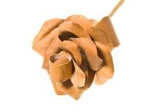 розовая древесина Стоковые Фотографии RF