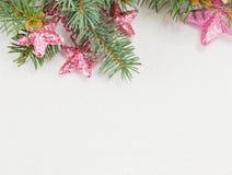 Розовая звезда сформировала орнаменты вися на ветви ели Стоковое фото RF