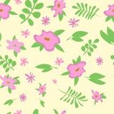 Розовая картина цветков для знамени весны бесплатная иллюстрация