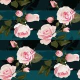 Розовая картина seamles вектора роз Реалистические цветки на предпосылке нашивок, флористической текстуре бесплатная иллюстрация