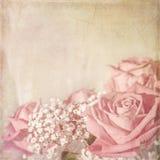Розовая карточка Стоковое Изображение