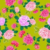 Розовая карточка yellow-01 Стоковое Изображение RF