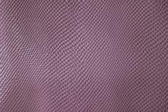 Розовая кожа ` s крокодила малая плитка Стоковая Фотография RF