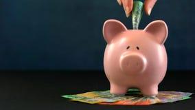 Розовая концепция денег копилки на синей предпосылке Стоковые Фотографии RF