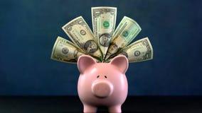 Розовая концепция денег копилки на синей предпосылке Стоковые Изображения