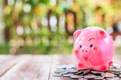 Розовая куча копилки и монетки на деревянной планке Концепция сбережений стоковое фото