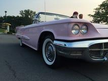 Розовая классика Стоковая Фотография RF