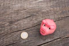 Розовая маленькая свинья с монеткой евро Стоковая Фотография RF