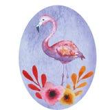 Розовая открытка фламинго иллюстрация вектора