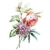 Розовая пассифлора иллюстрация вектора