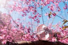 Розовая подарочная коробка сердца на предпосылке дерева и цветка Валентинка Стоковое Изображение RF