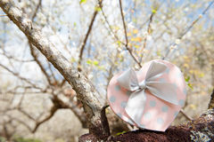 Розовая подарочная коробка сердца на предпосылке дерева и цветка Валентинка Стоковое фото RF