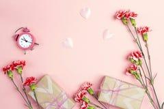 Розовая предпосылка с цветками гвоздик, будильником и подарком bo Стоковые Изображения RF