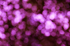 Розовая предпосылка Bokeh Стоковые Изображения RF